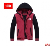 The North Face Hoodies AAA -030