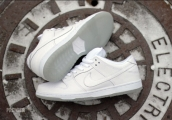 Women Nike SB Dunk Low Pro White Ice