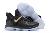 Nike Lebron 14 Black Gold