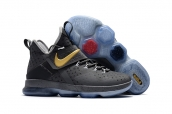 Nike LeBron 14 Kid Grey Gold
