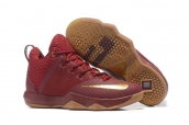 Nike Lebron 9 Red Gold