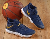 Nike Lebron  10 Low Blue Gold