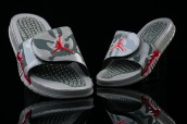 Air Jordan Hydro V Retro Grey