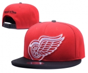 NHL Detroit Red Wings Hat - 030