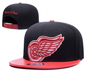 NHL Detroit Red Wings Hat - 031