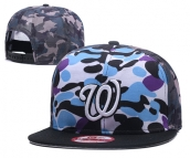 MLB Washington Nationals Hat - 041