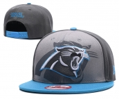 NFL Carolina Panthers Hat - 108