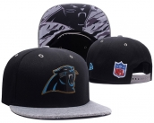 NFL Carolina Panthers Hat - 121