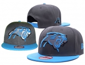 NFL Carolina Panthers Hat - 124