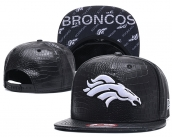 NFL Denver Broncos Hat - 101