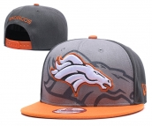 NFL Denver Broncos Hat - 120