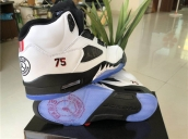 Air Jordan 5 Germanic White